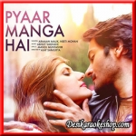 Pyar Manga Hai Tum Hi Se - 2016 - (VIDEO+MP3 Format)