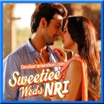 Zindagi Bana Loon - Sweetiee Weds NRI - 2017 - (VIDEO+MP3 Format)