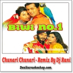 Chunari Chunari - Remix - Dj Rani - (VIDEO+MP3 Format)