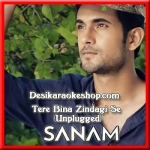 Tere Bina Zindagi Se (Unplugged) - Sanam Puri - 2016 - (VIDEO+MP3 Format)