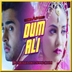 Dum Ali - Baankey ki Crazy Baraat - 2015 - (VIDEO+MP3 Format)