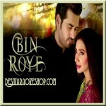 Tere Bina Jeena - Bin Roye - 2015 - (VIDEO+MP3 Format)