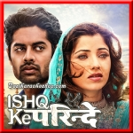 Dil Tod Ke - Ishq Ke Parindey - 2015 - (VIDEO+MP3 Format)