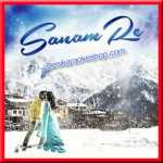 Sanam Re (Piano Instrumental Version) - Sanam Re - 2016 - (VIDEO+MP3 Format)